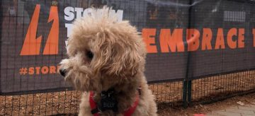 The Furry Friends of Storm the Wall 2019