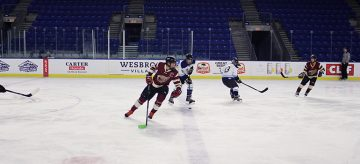 Spring Thunderbird Adult Hockey League