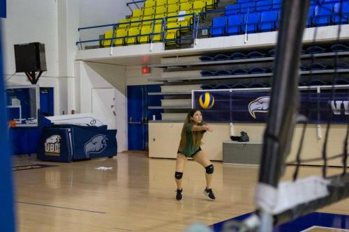 Volleyball-Coed-Technical-Skills-2