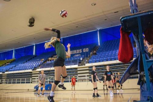 Volleyball-Skill-Development-1